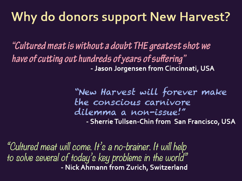 Quotes on why donors donate