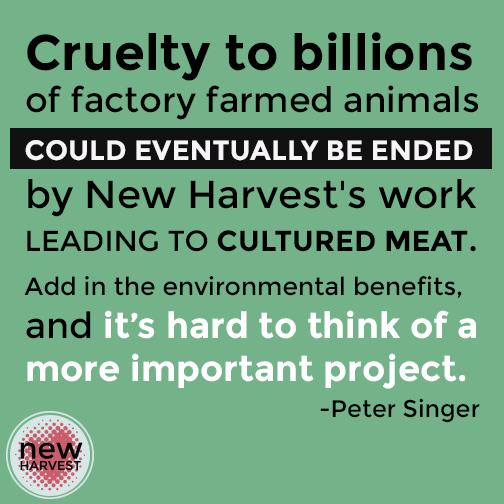 Poster saying 'cruelty to billions of factory animals could eventually ended by New Harevest's work leading to cultured meat. Add in the enviromental benefits and its hard to think of a more important project.