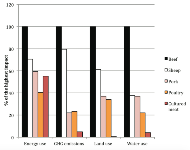 chart showing enviromental imact of different meats. Beef is by far the most impactful.