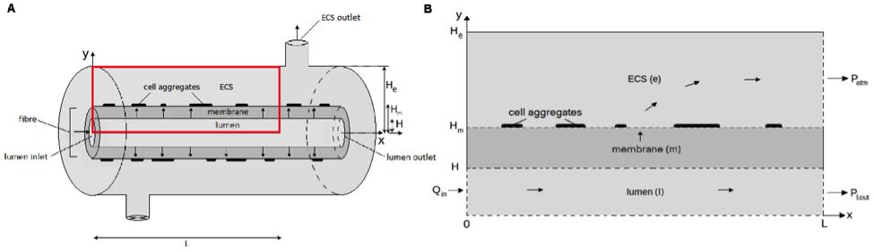 diagram of single hollow tube