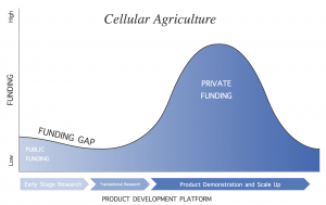 line graph of public and private funding for cellular agriculture