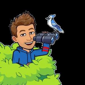 julian cohen bitmoji birdwatching