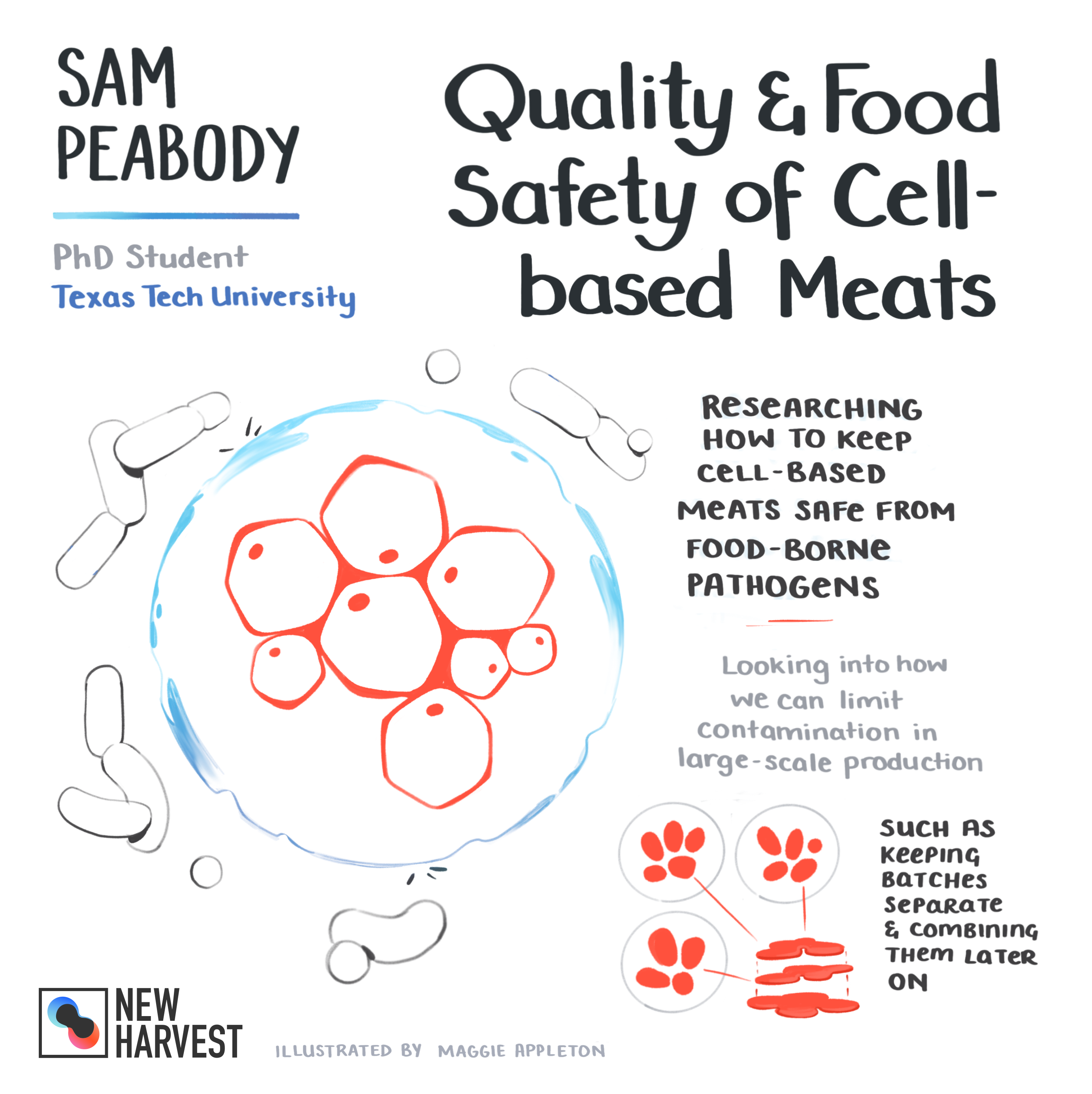 Diagram of Sam Peabody's breakdown of quality and food safety of cell based meat