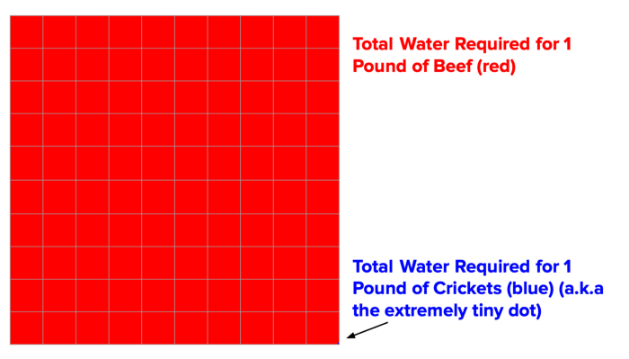 water requirements for beef versus crickets