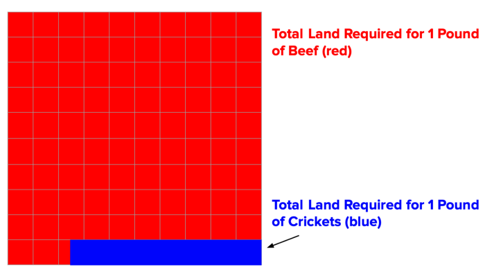 land requirements for beef versus crickets
