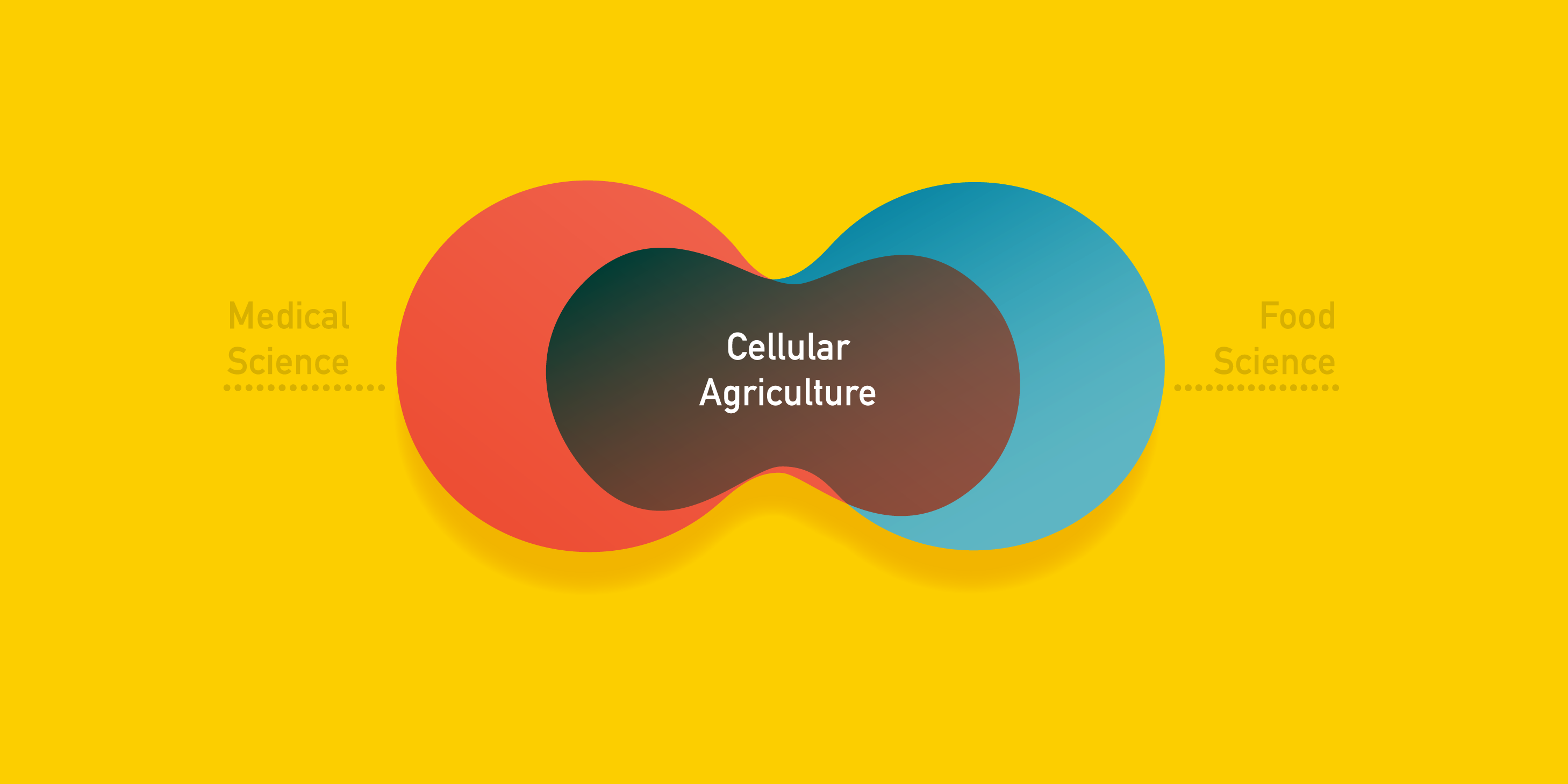 cellular agriculture at connection between circles of medical science and food science