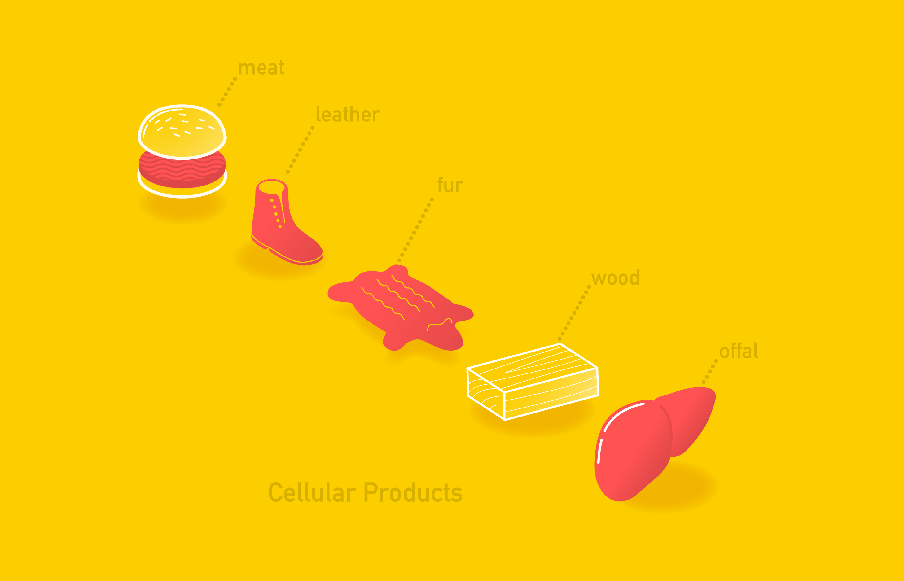 group of cellular products