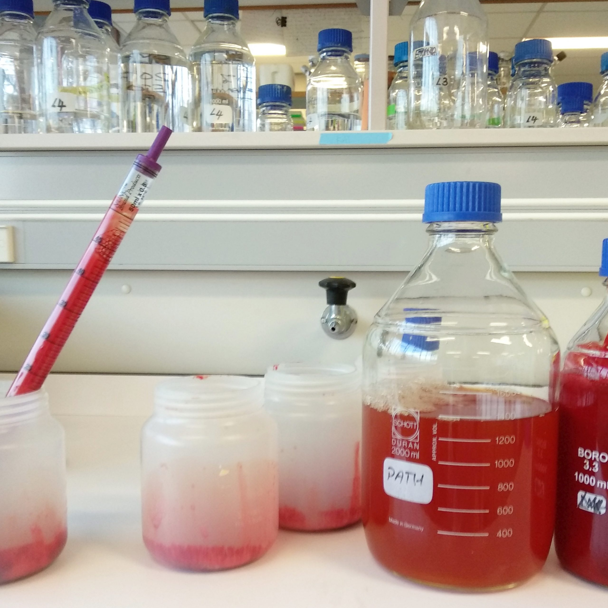 human plasma separated from human red blood cells